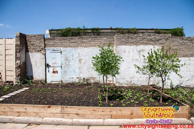 An organic garden has been planted and will provide fresh produce to be sold at the market.  http://citysightseeing-blog.co.za/2014/10/15/a-new-market-in-town-johannesburg/