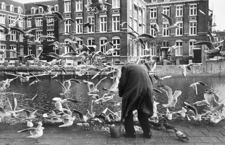 1968. Feeding birds at the Stadhouderskade in Amsterdam. Photo: Ed van der Elsken #amsterdam #1968 #Stadhouderskade