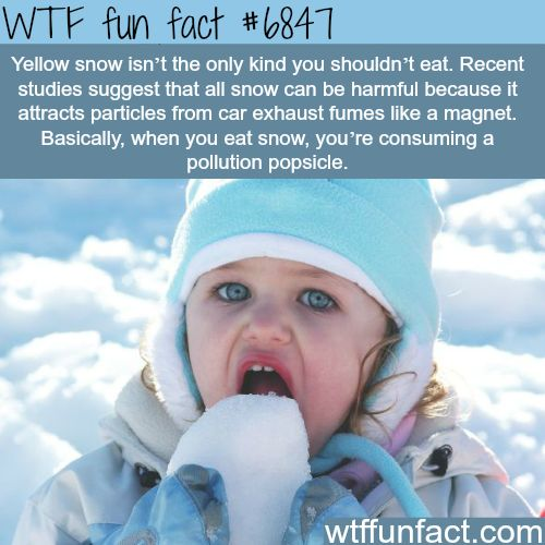 Why you should not eat snow - WTF fun fact