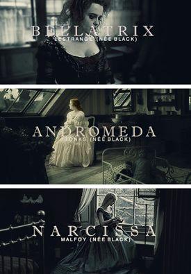 The Black sisters. Bellatrix, Andromeda and Narcissa. Bellatrix married Rodolphus Lestrange. Andromeda married Ted Tonks. Narcissa married Lucius Malfoy.