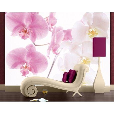 Orchidea - óriás lakásposzter #lakasdekoracio #fototapeta #poszter_tapeta #poszter #orchidea