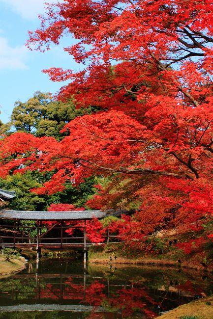 Kodaiji Temple, Kyoto,Japan