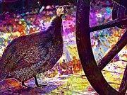 """New artwork for sale! - """" Guinea Fowl Guinea Fowl Chicken  by PixBreak Art """" - http://ift.tt/2v5yK8D"""