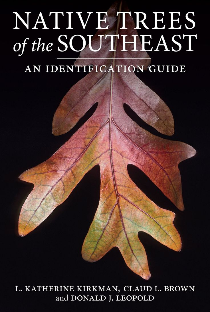 18 best books for wildlife gardening and landscaping in north the diversity of woody plants in the southeast is unparalleled in north america native trees of the southeast is a practical compact field guide for the fandeluxe Gallery
