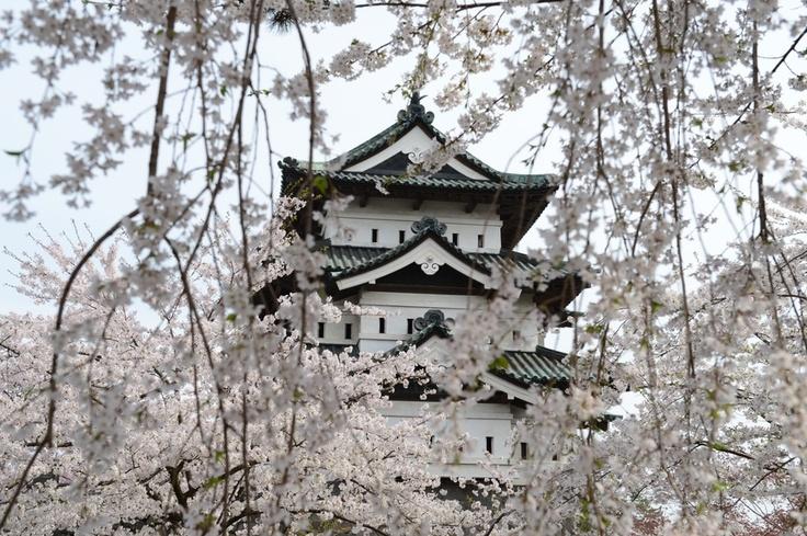 Hirosaki Castle #aomori #japan