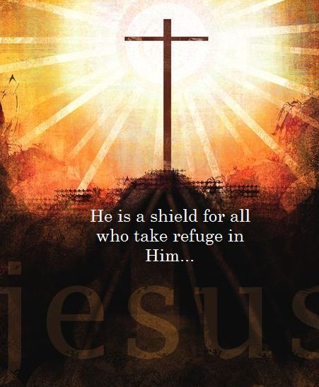 He that dwelleth in the secret place of the most High shall abide under the shadow of the Almighty. I will say of the Lord, He is my refuge and my fortress: my God; in Him will I trust. Psalm 91:1-2.