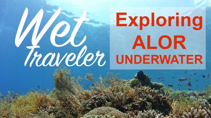 Wet Traveler - exploring Alor with Sony Actioncam