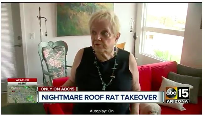 Woman says roof rats infestation forced her to move out of a senior living center