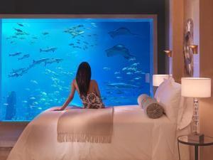Hotel Atlantis The Palm, en Dubai, donde poder dormir como debajo del mar. Cuenta con un acuario submarino!  http://www.guias.travel/ver/?hotel/ae/atlantis-the-palm.es.html