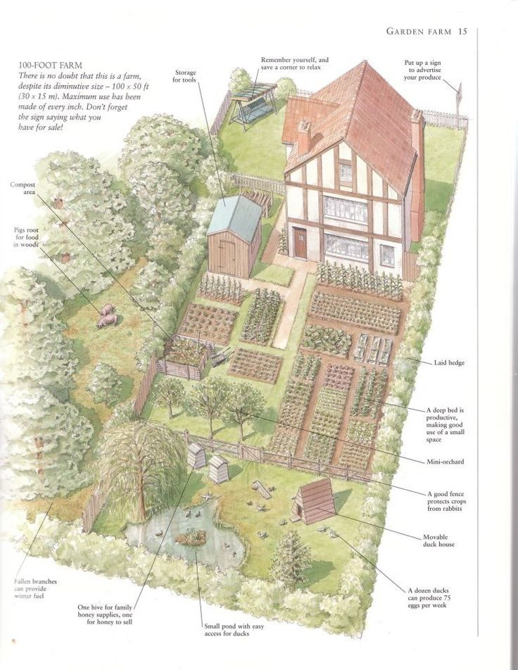 Here's one person's take on what a 100' x 50' home lot can provide as a small farm, this is a very English style of homesteading, born out of the victory style of gardens of the 1940's... Check out the pinterest board A Year with the Garden Planner to see what difference the Garden Planner makes in my own small homestead garden.......