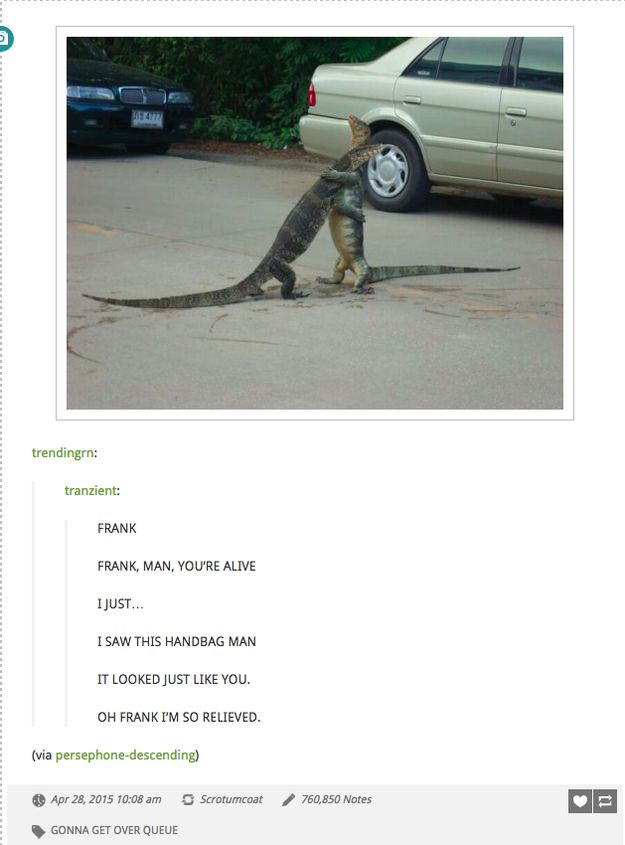 24 Funniest Animal Posts On Tumblr In 2015