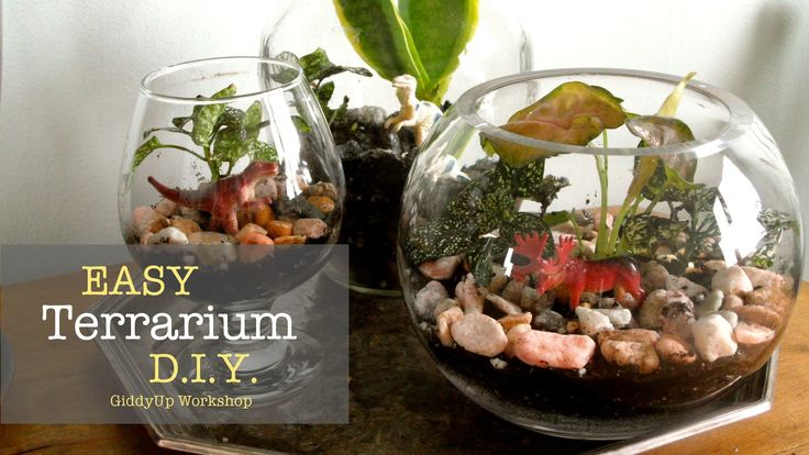 Each of these glass terrariums cost me LESS than $5 each. Fun to make and a beautiful gift idea! SUBSCRIBE to be one of the first to see my latest tutorials!...
