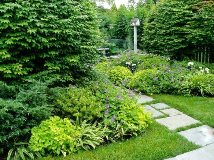 1000 Images About Slope On Pinterest Shade Garden