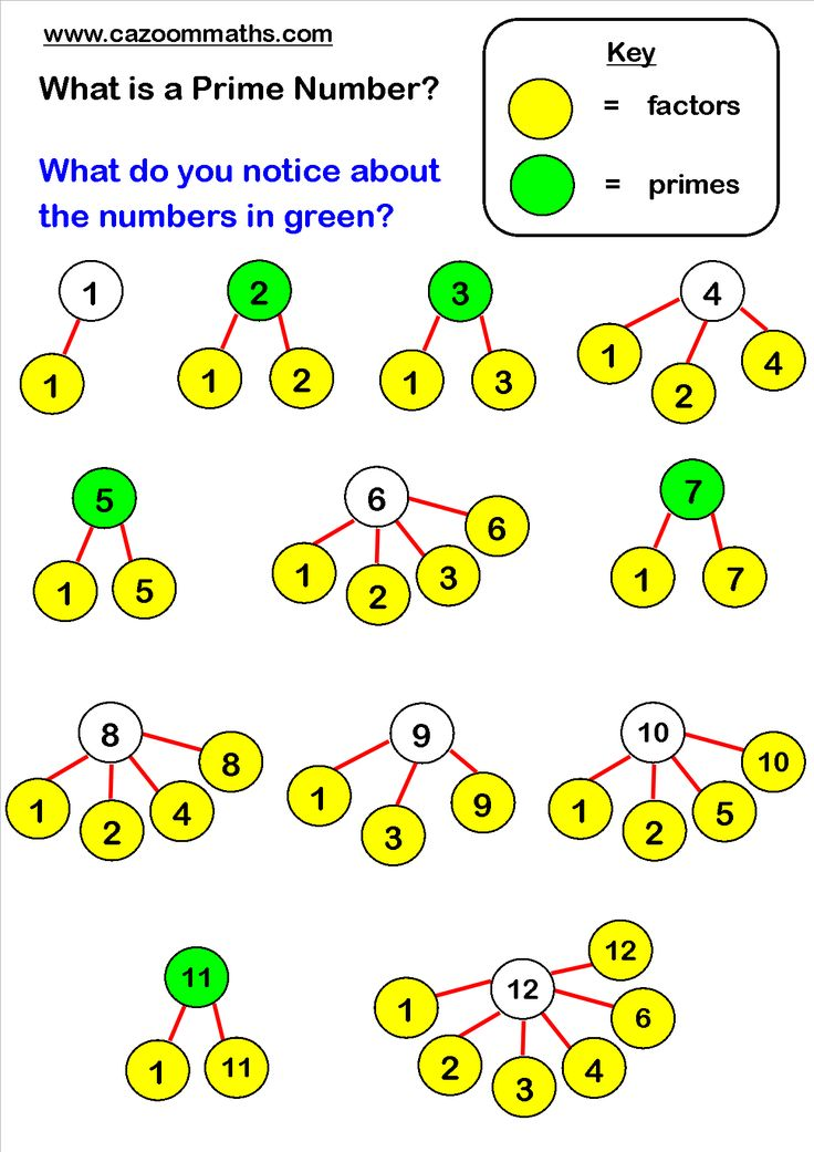 what are prime numbers - 736×1041