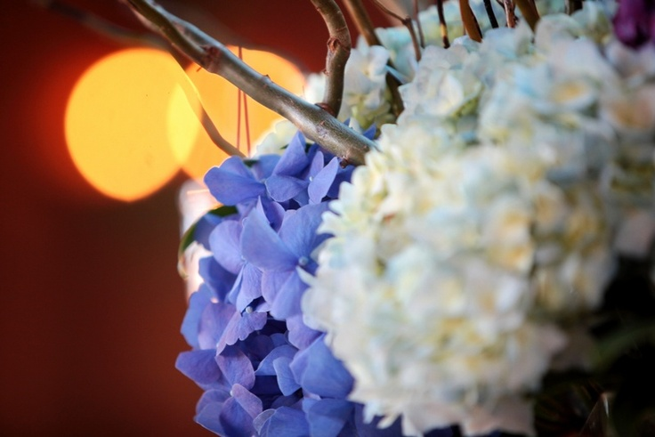 Blue Willow Centerpiece : Best ideas about curly willow centerpieces on pinterest