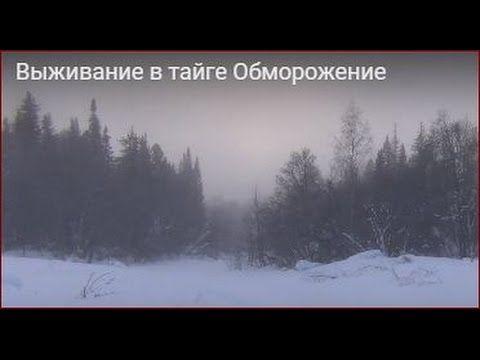 Выживание в тайге Обморожение. Костер в мороз -55. Напилка дров в мороз.