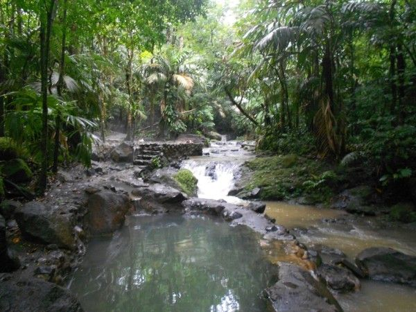 19 best travel with kids images on Pinterest Travel, Costa rica - travel consent form sample