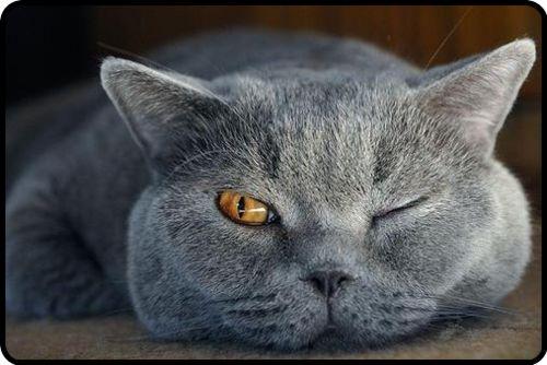 Sleep with one eye open