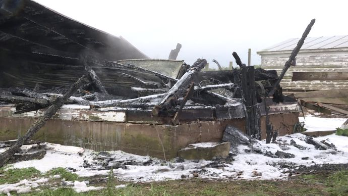 Two Pigs Killed In Barn Fire Ignited By A Heat Lamp Rockingham County Virginia 5 3 16