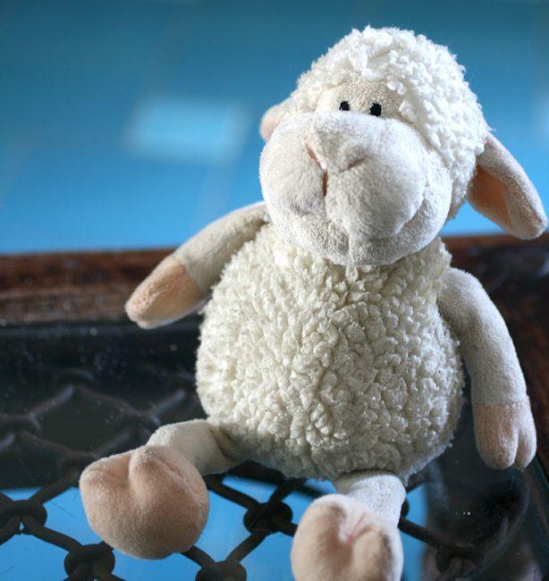 Invece di contare le pecore | http://www.ilpastonudo.it/elenagaleazzi/il-cibo-che-cura/invece-di-contare-le-pecore/