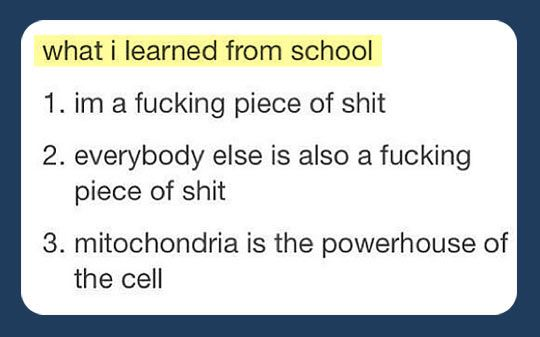 What I learned from school...