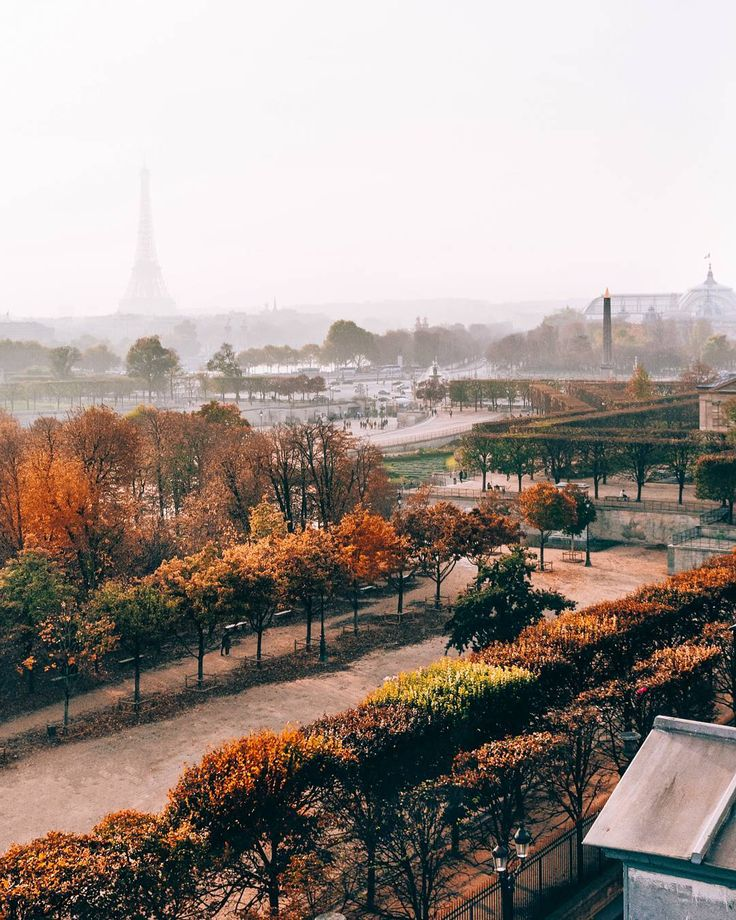 a foggy, autumn morning in paris - travel | la vie parisienne - wanderlust - fall - france - park - parks - eiffel tower - trip - explore - adventure - bucket list - inspiration - idea - ideas - picture - travel photography - photograph - moody
