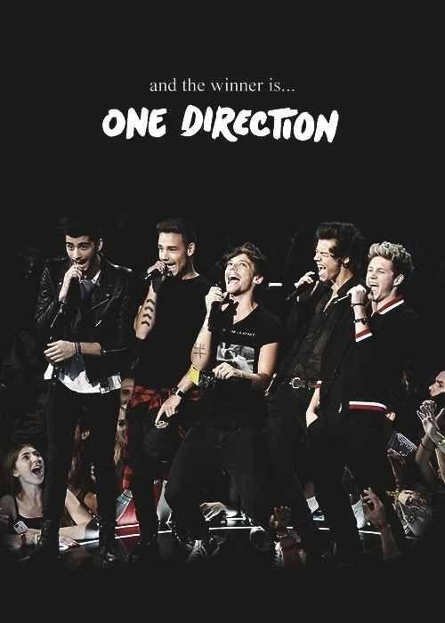 One Direction Liam Payne Louis Tomlinson Harry Styles Zayn Malik Niall Horan