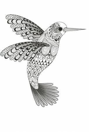 Zen Coloring Nature Adult Coloring Book. Relax into the creative world of coloring. Containing a beautiful and diverse collection of illustrations, this fantast