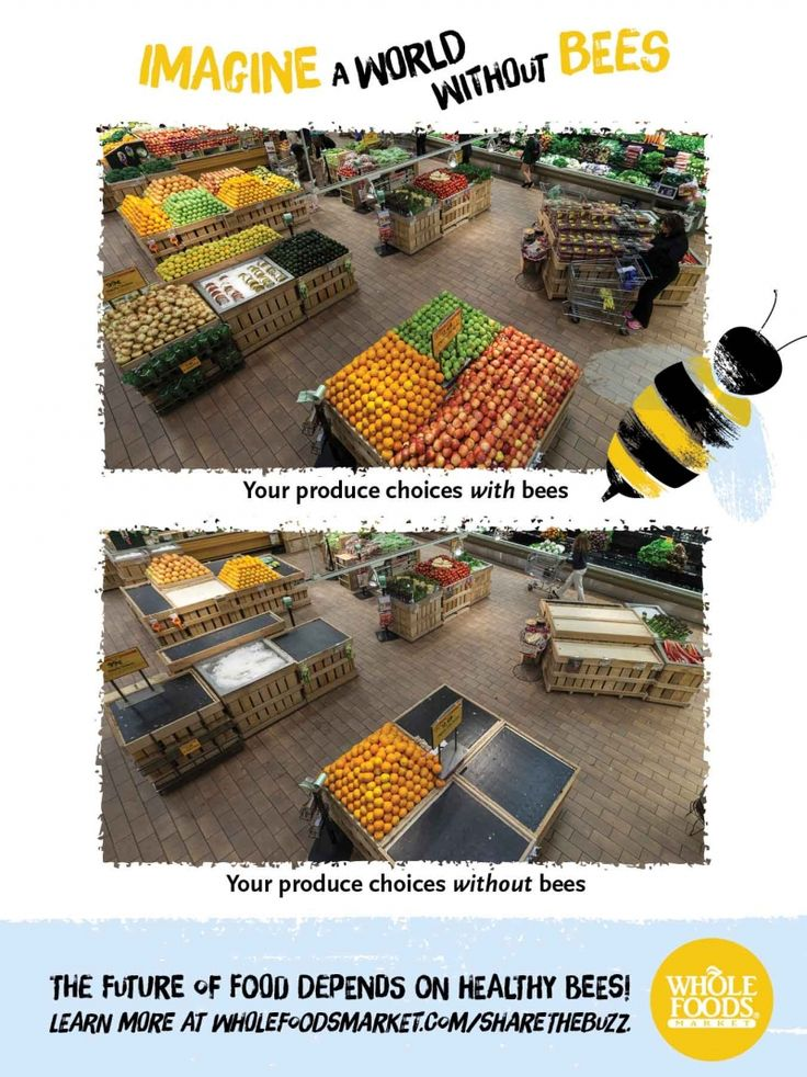 Give bees a chance the dairy aisle needs pollinators