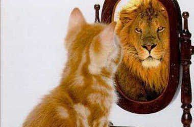 Selbstwertgefühl | Wie seinen Selbstwert und sein Selbstwertgefühl steigern und stärken?