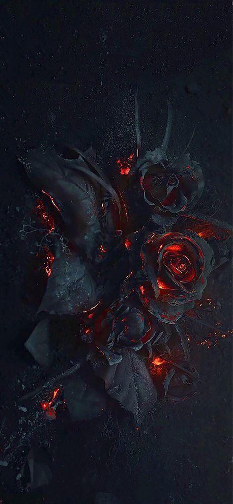 48 Trendy Ideas Flowers Aesthetic Dark Wallpaper Gothic Wallpaper Black Roses Wallpaper Rose Wallpaper
