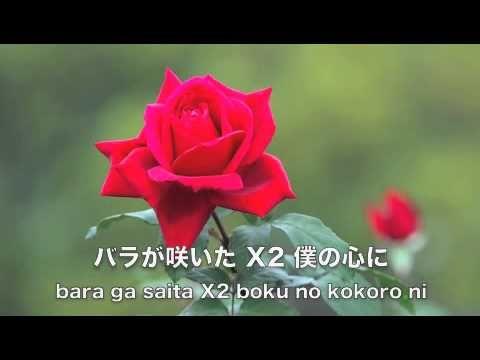 バラが咲いた 安田祥子 由紀さおり (歌詞付き)愛唱歌 - YouTube