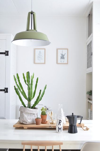 Love this interior style. The industrial lamp and the plants on the table.
