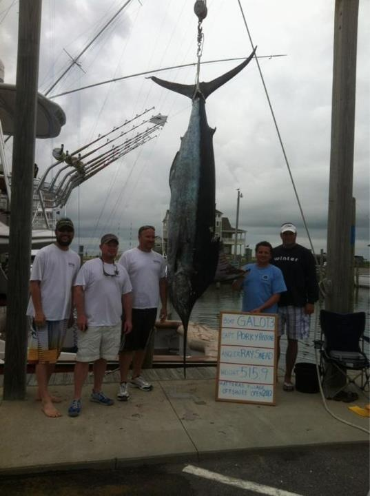 8 best offshore fishing in north carolina images on for Tuna fishing north carolina