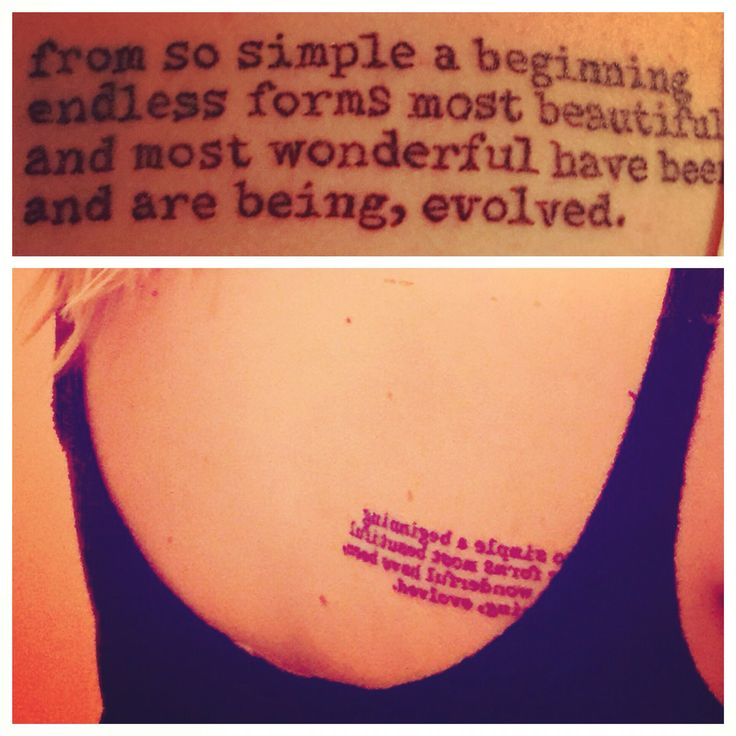 Darwin tattoo.   From so simple a beginning endless forms most beautiful and most wonderful have been and are being, evolved.