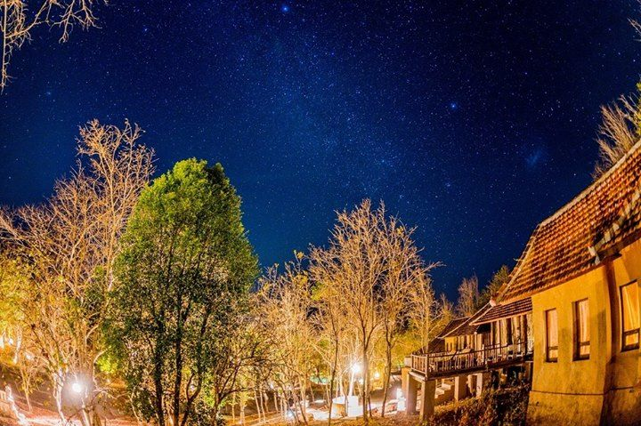 Enjoy the quiteness under a canopy of stars youve always dreamt of only here at NusaBay Menjangan by WHM Kotal Beach West Bali National Park.  Contact us for your room reservation at reservations@wakahotelsandresorts.com or call to 62-361-484085  http://ift.tt/2yD5aHS  #nusabay #nusabaymenjangan #wakahotelsandresorts #westbali #westbalinationalpark #nationalpark #yoga #trekking #cycling #jungle #snorkeling #diving #scubadiving #dive #padi #cottage #resort #bali #ocean #summer #summerholiday…
