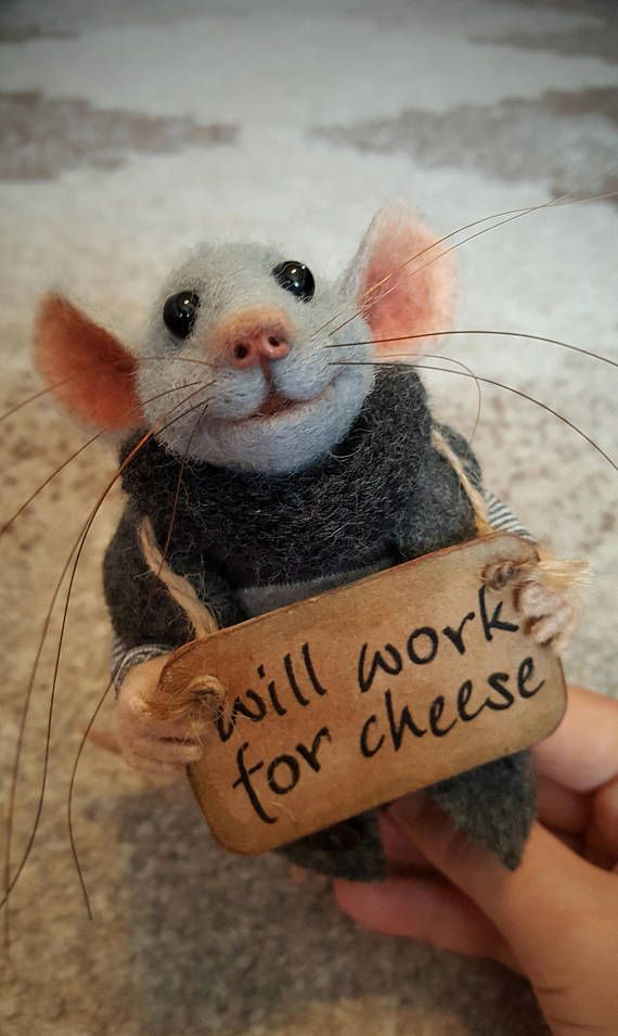 Homeless Mouse, Collectible doll, Felted Mouse, So…