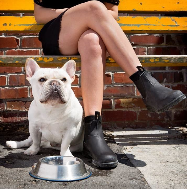 We can't decide which is cuter the #Blundstone 510 Original boots or