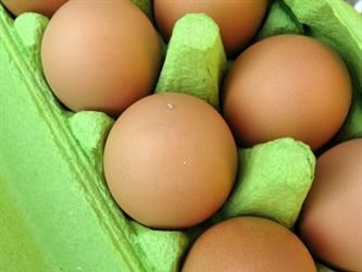 12 Secret Homemade Uses for Eggs:  facial cleansers, shampoo, food paint, pots for small plants, composting, leather cleaner, glue, pest repellant, musical instruments, candle mold, ornaments