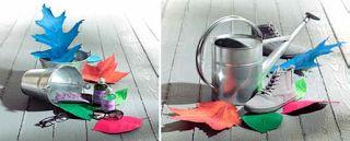 Creation Vetrina: Idee vetrina Autunno 2013: Glowing Autumn