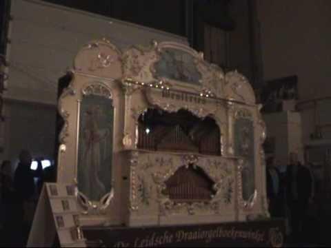 Sinterklaas liedjes (o.a.: O, kom maar eens kijken- Zie de maan & Dag si...