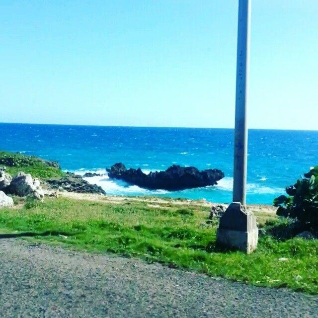 No meu governo prometo construir rodovias só à beira-mar. e pintar toda a água de ciano (Santo Domingo -> Punta Cana)