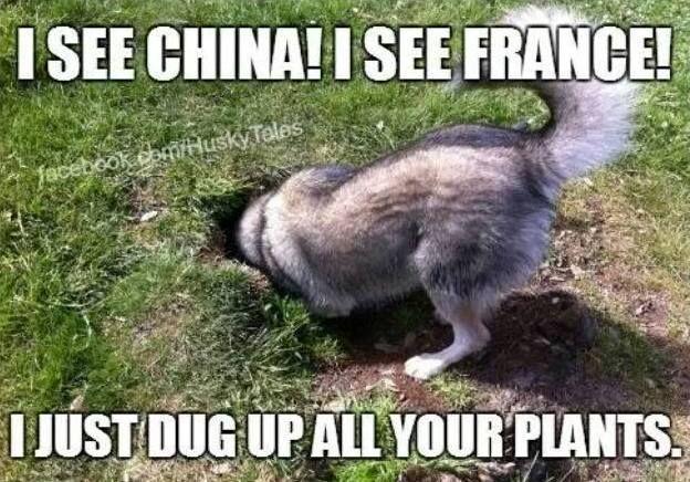 I See China And France