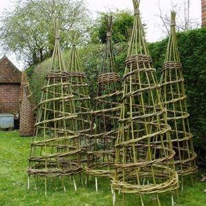 tomato cages oh how the bunnies would love these right hight for them to just pluck tomatoes fhahahahahahaha