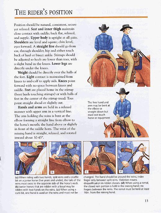 1-POSICIÓN DEL JINETE A CABALLO - Conocimientos generales del caballo