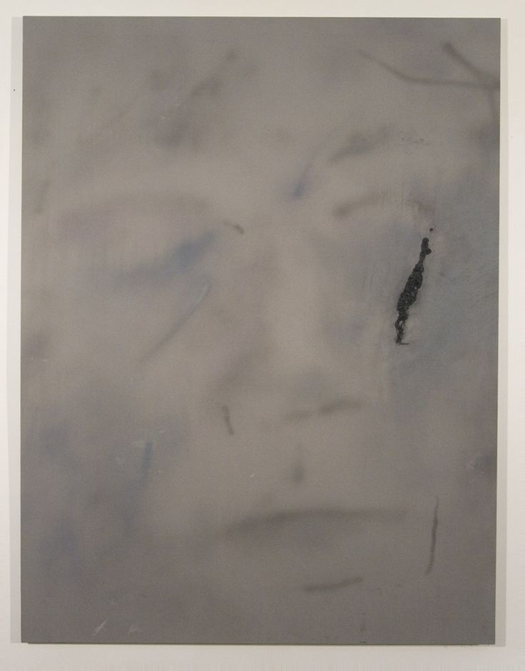Ian Swanson, Aging3, 2014, airbrushed acrylic, graphite on rayon, 62 x 46 in