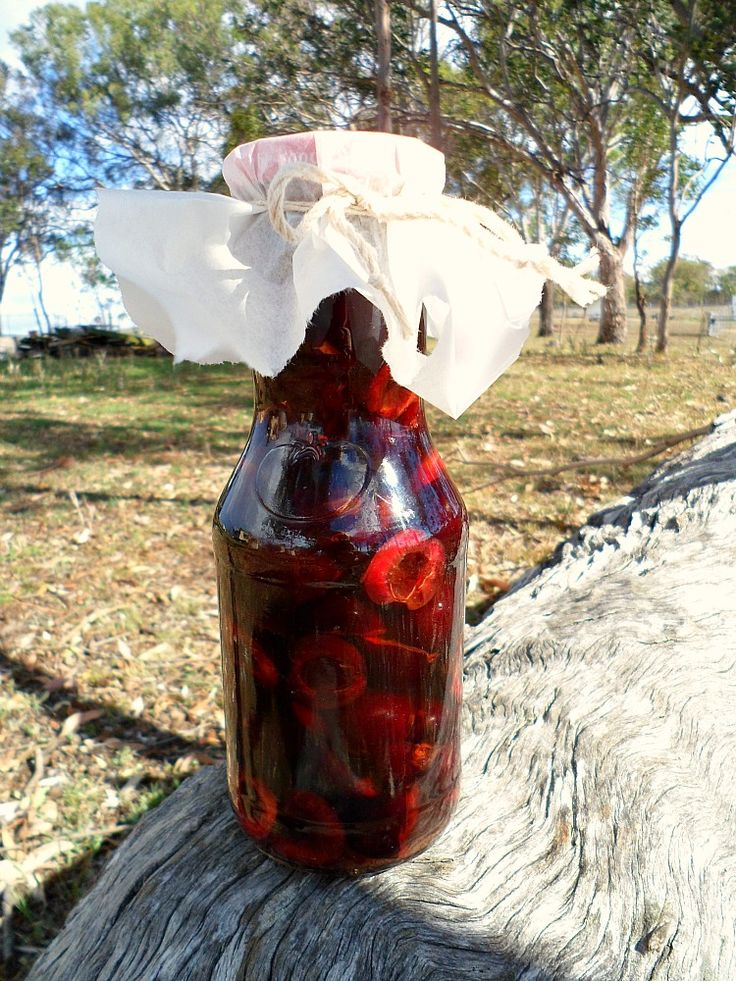 Cherry-Infused Vodka...these would make great gifts for the holidays.