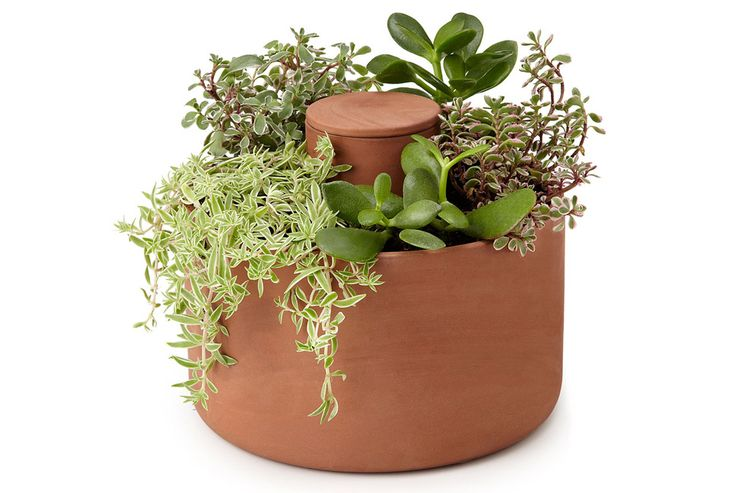 """The understated 8-inch pot, made from terracotta and zisha, was inspired by an ancient irrigation tool known as the Olla, which farmers used to conserve water in arid climates.  """"Joey Roth Self-Watering Planter"""""""