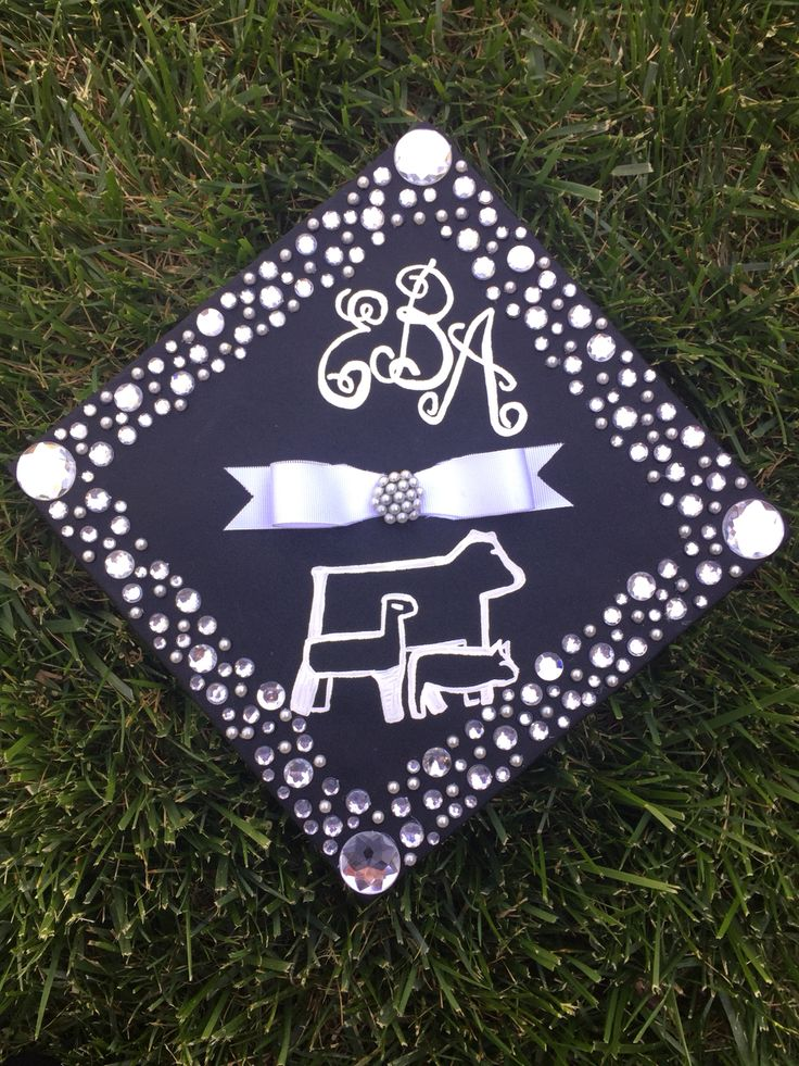 17 Best Images About Graduation On Pinterest Colleges