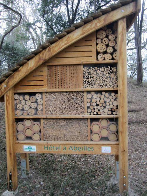 Beautiful French beekeep